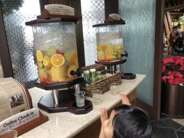 念願のハワイのディズニーホテル「アウラニ・ディズニー・リゾート&スパ コオリナ・ハワイ」(アウラニ1日目)