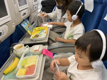 チャーター便で緊急帰国【MNL-INC】(フィリピン親子留学)