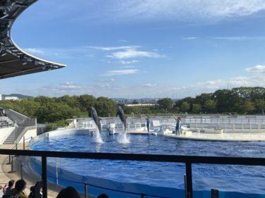 京都水族館はコロナ入場規制中
