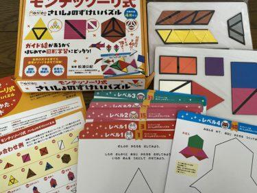 知育玩具モンテッソーリ式ずけいパズル ちえパズルに子供たちが夢中!